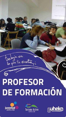 PROFESOR DE FORMACIÓN 2015
