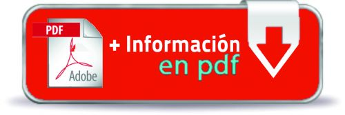 boton descarga PDF